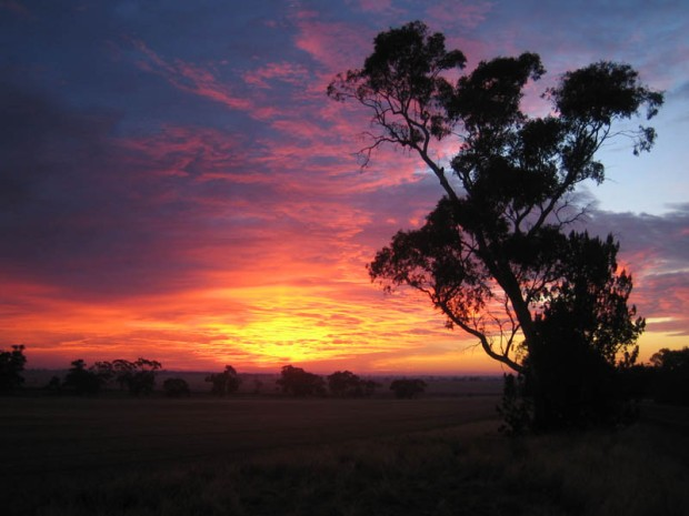 Australia_sunrise_small.jpg