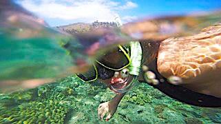 a snorkeller